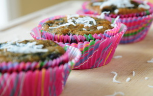 rsz_blueberry_muffins_2